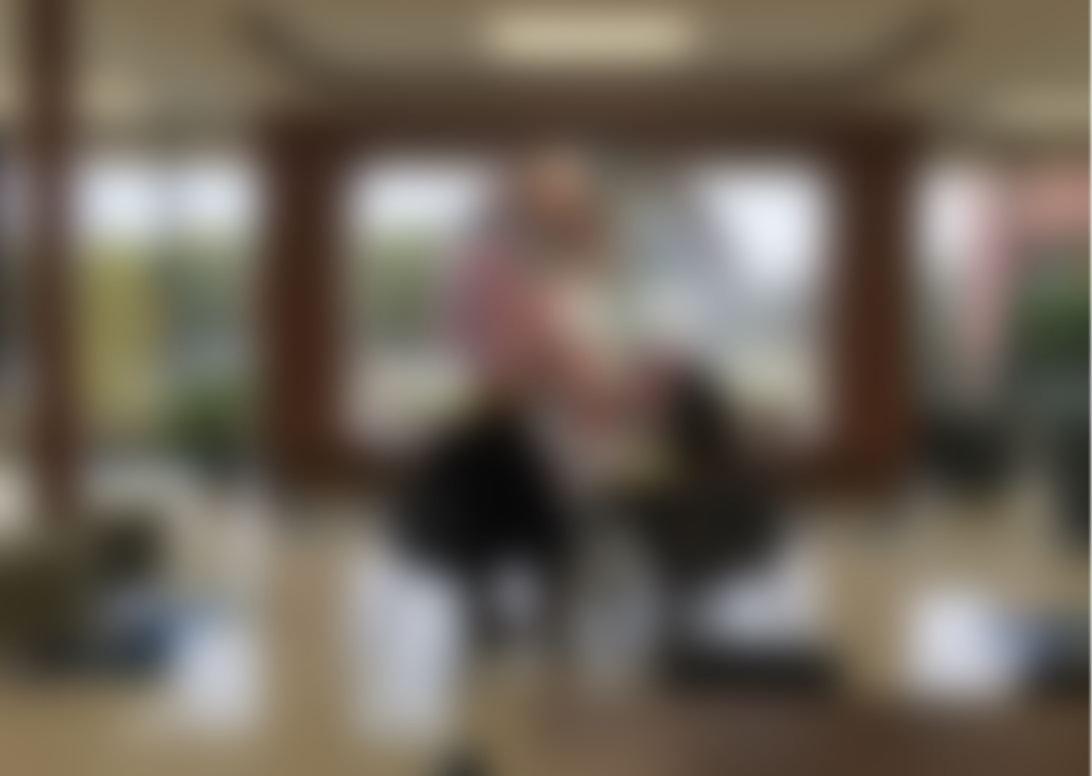 Public Art blurred.JPG