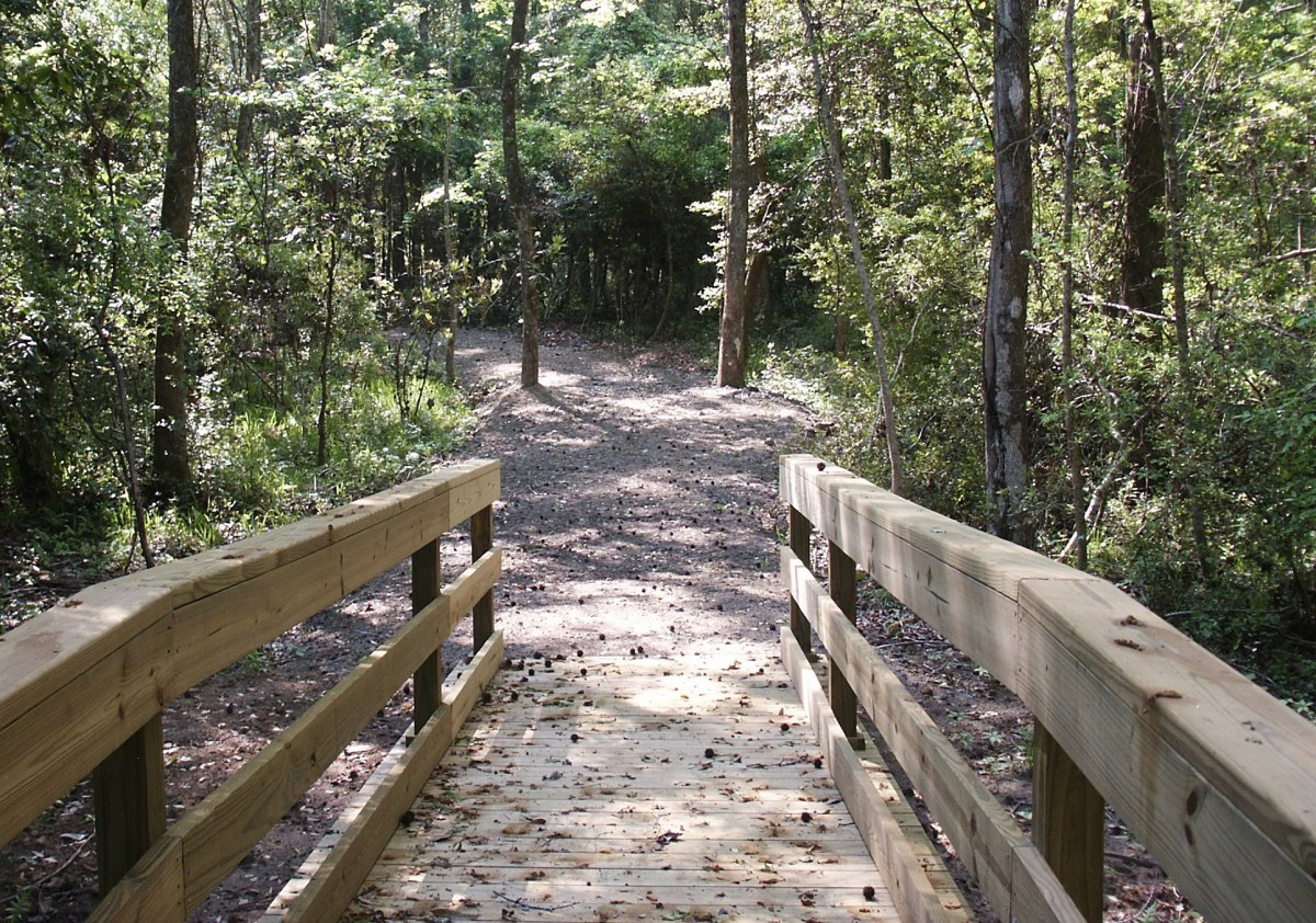 Brookgreen Garden Low Country Trail Bridge