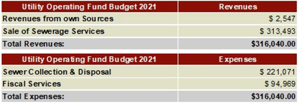 2021 Utility Operating Budget chart.jpg