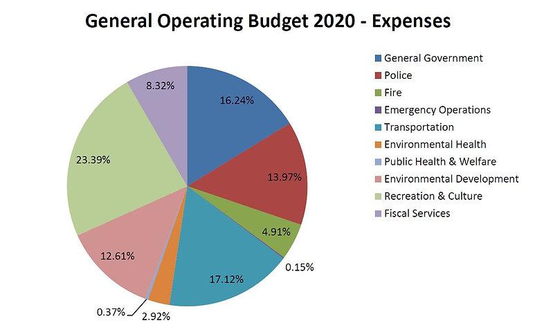 Budget 2020 chart.JPG