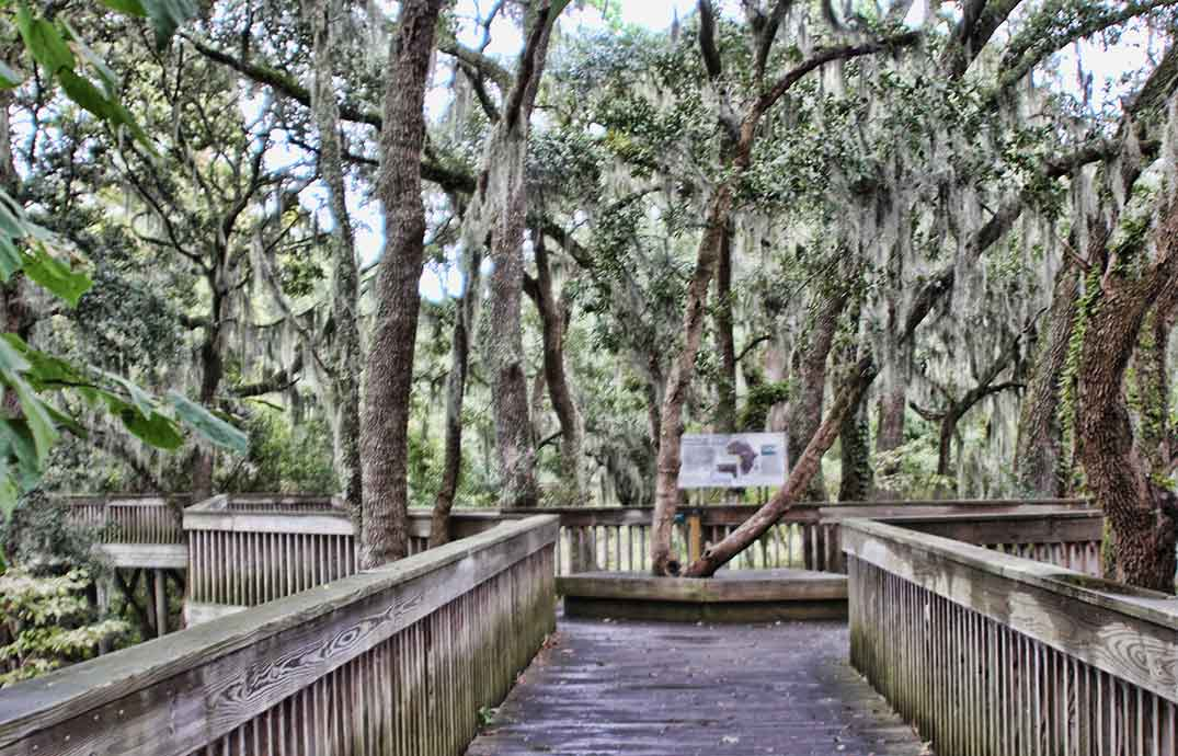 Brookgreen Garden Low Country Trail Boardwalk, Signage and Audio
