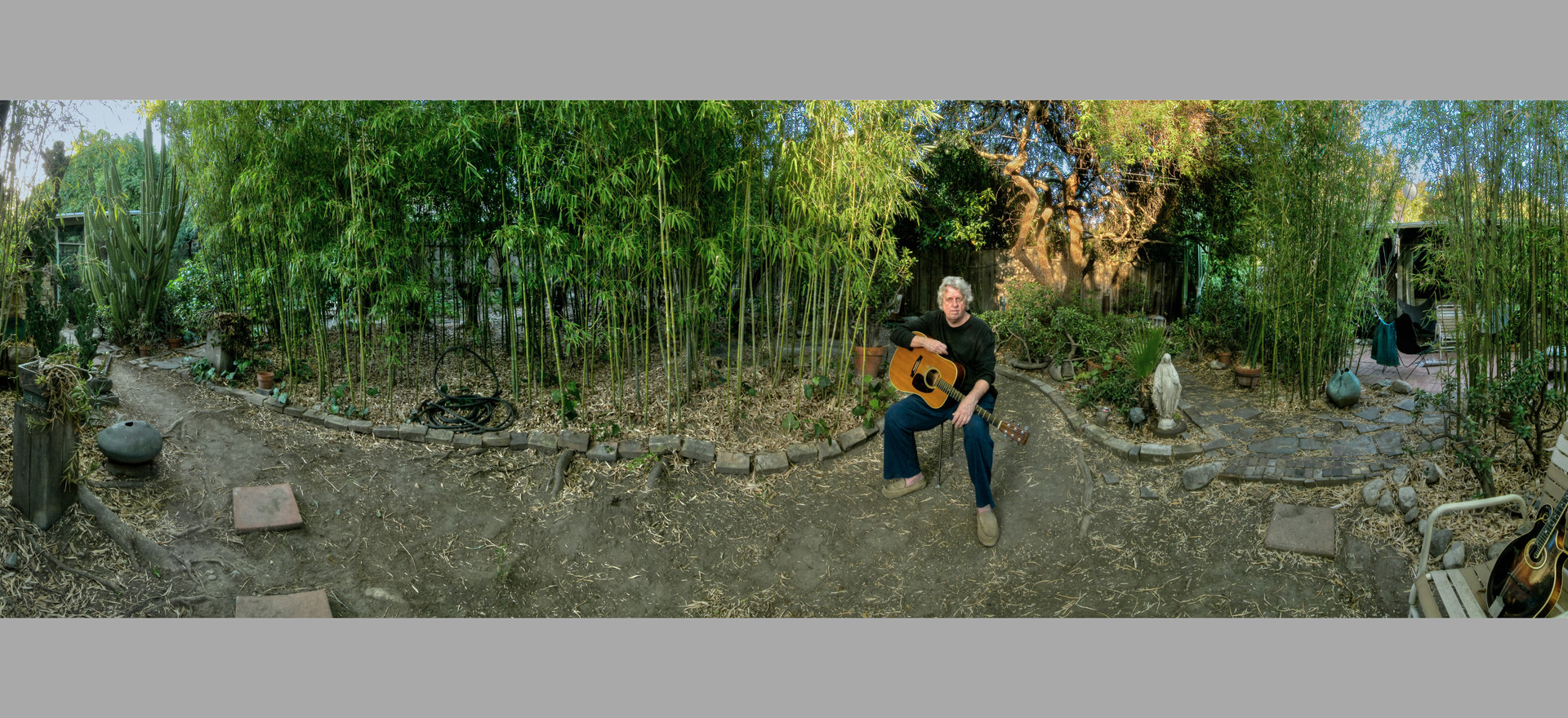 Chris Darrow's bamboo forest, 2007