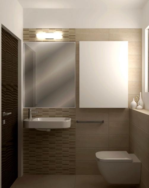 Rénovation toilette, La Robertsau, Strasbourg