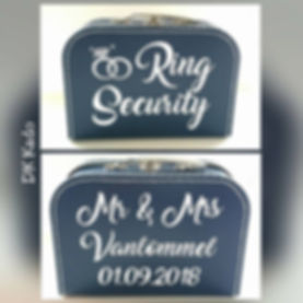 koffertje ring security blauw