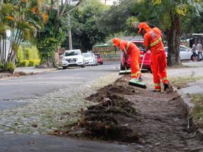 Capina de vias aumentam em 168% em Porto Alegre