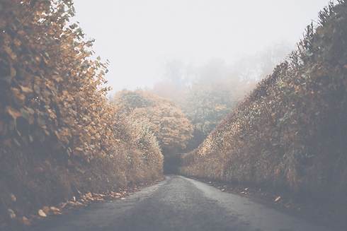 Autumn Road_edited.png