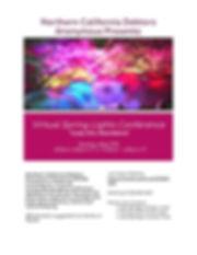 Spring Lights 2020-page-001.jpg