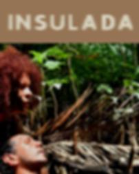 Insulada capa do catálogo virtual
