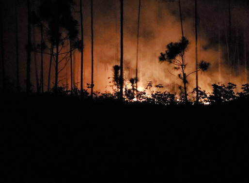 Bush Fires Erupt on Great Abaco Once Again
