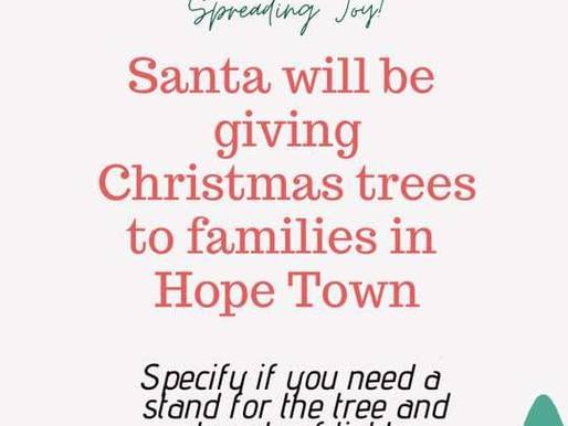 Generous Donor Gives Hope Town Residents Christmas Trees