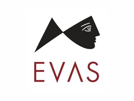 Обзор корейской косметики бренда Evas