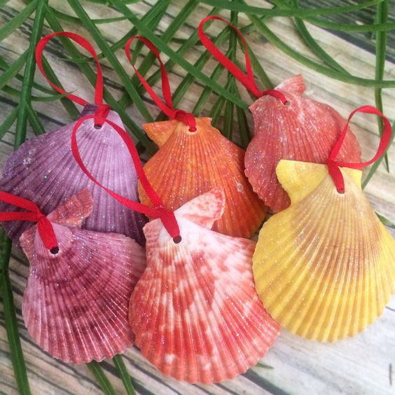 Natural shell ornaments