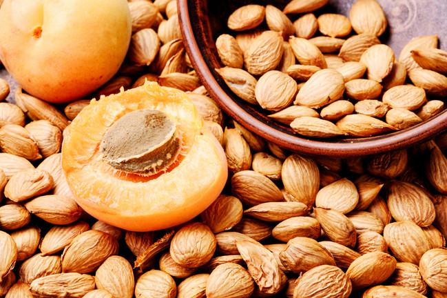 Apricot seeds contain cyanide