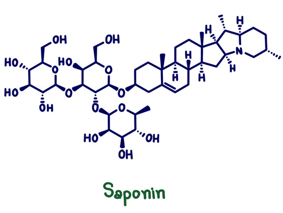 Saponin Chemical Structure