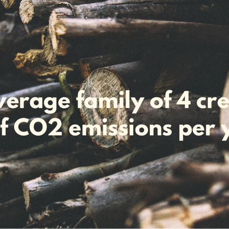 What is the Carbon Footprint?