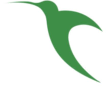 Colibri-canvas.jpg