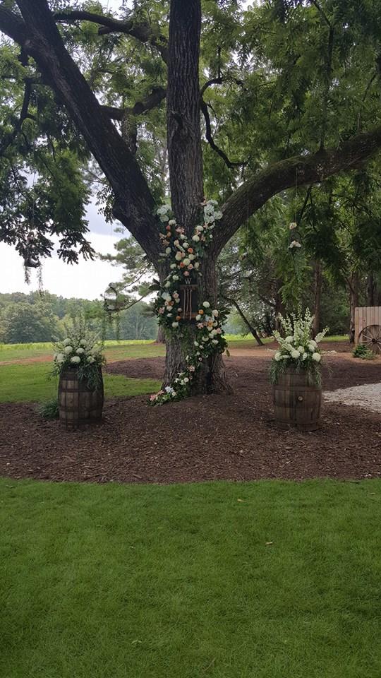 Tree & Barrels