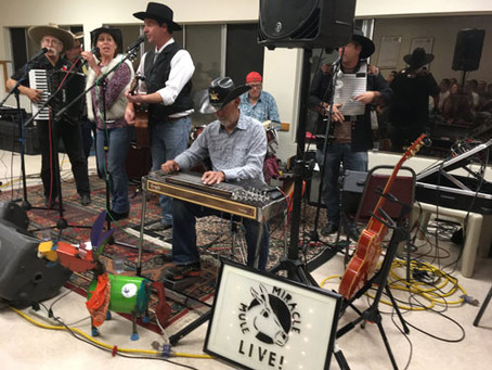 Bringing Healing Music to New Friends in Sonoma County