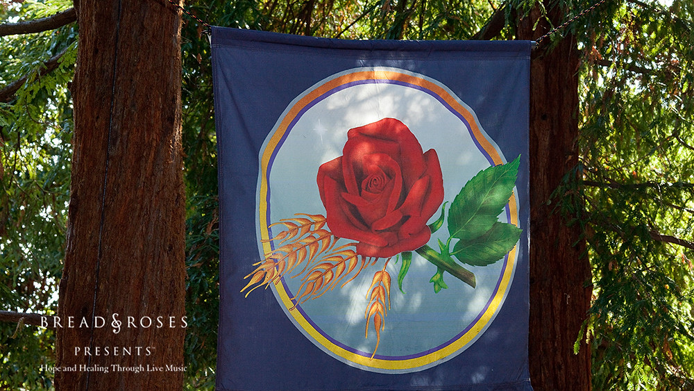 A rose banner in the redwood trees at 2012 Bread & Roses benefit event at Coventry Grove in Kensington. Photo by Ken Friedman