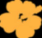 Hibiscus logo