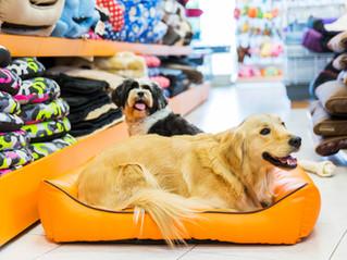 Keyword หัวใจดวงแรก ของการทำตลาดสายสินค้าสัตว์เลี้ยง #PetMKT (1)