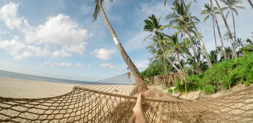 Carribean Trips