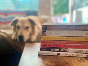 Five Books to Improve your Relationship With Your Dog