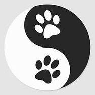 massage-canin-73-chambery-savoie.jpg