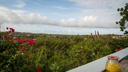 View from El Gaucho