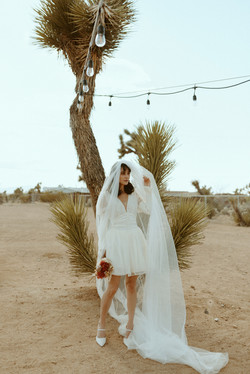 Anti-Bridal Campaign @thedesertlilyjoshuatree