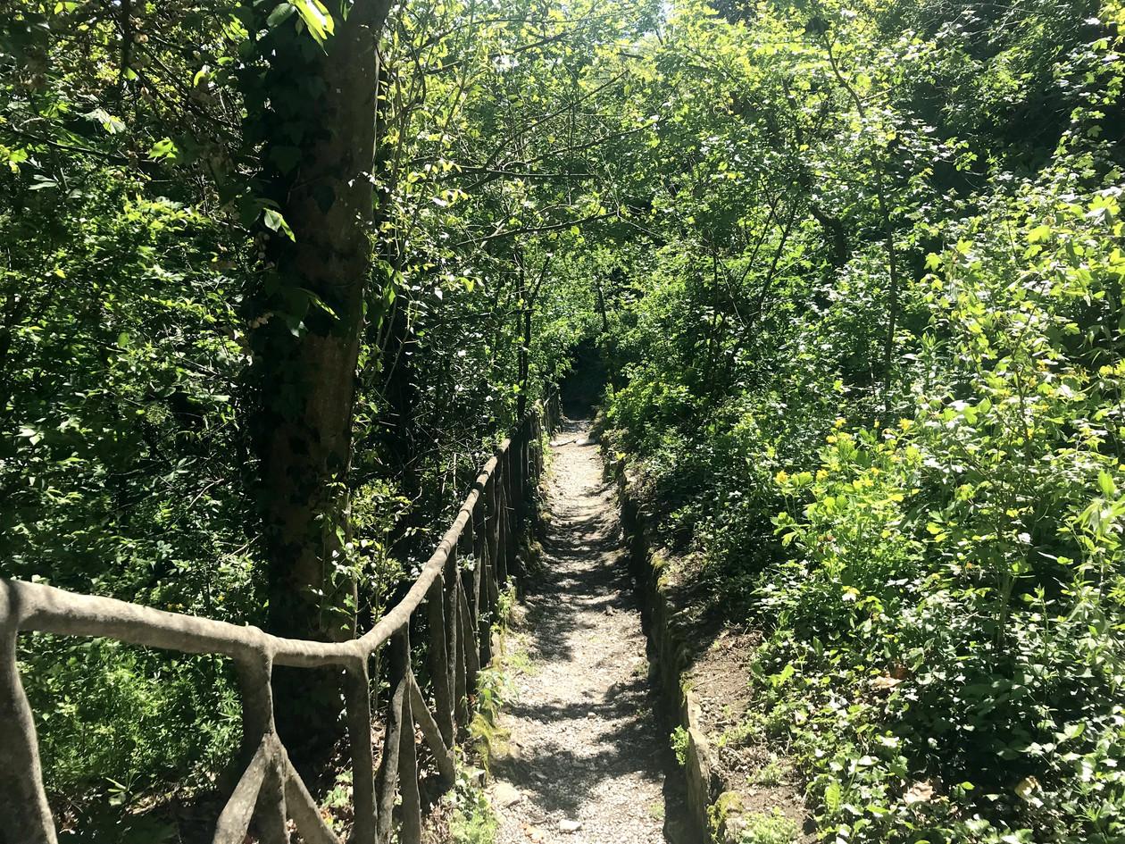 les sentiers des gorges de Vezzeno