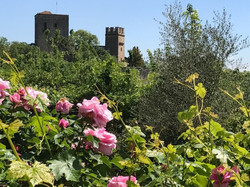il Museo della Rosa Nascente