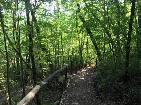 De paden in het park van het kasteel