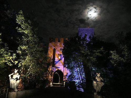 Однажды вечером в замке Гроппарелло