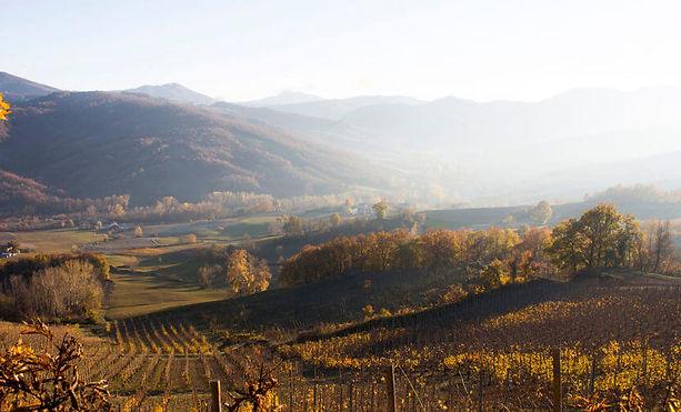 colli-piacentini-in-autunno-1024x508.jpg
