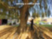 IMG_2834_edited.jpg
