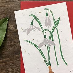 Snowdrops Plantable Card.jpg