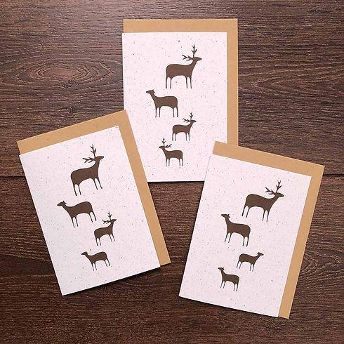 zerowaste-christmas-reindeer-poo-card.jpg