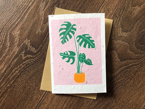 Swiss Cheese Plant Card by Charlie Collis Design.jpg