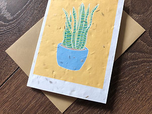 Sansevieria Plantable Card.jpg