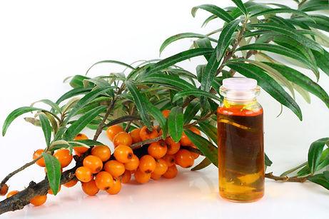 Buckseed Oil, healing skin care