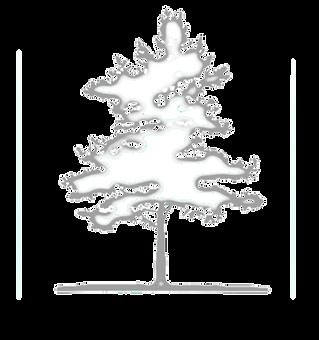 IDBD-logo.png