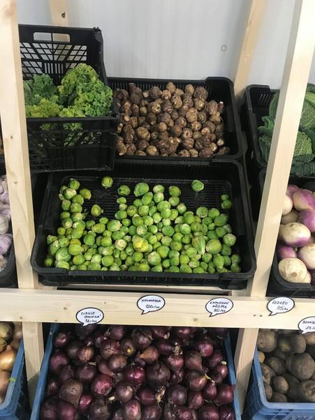 Čerstvá zelenina a ovoce
