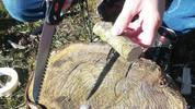 Jeg starter med at skære en gren af et træ. Grenen skal være ca. 4-6 cm. i diameter og ca. 12 cm lang. Ellers kan man bruge en stamme på ca. 10-12 cm i diameter og så flække den i 4 stykker. Her er det et stykke birketræ.