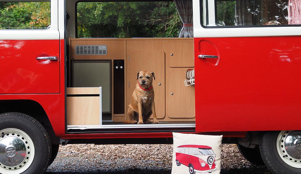 Dog Friendly Campervan Holidays at Isle of Wight Campervan Holidays