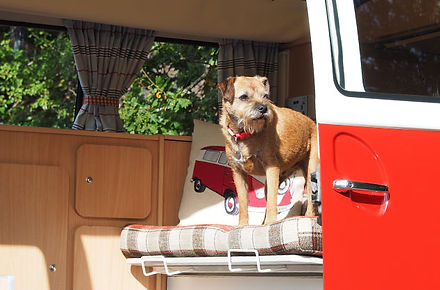 Dog Friendly Campervan Holidays