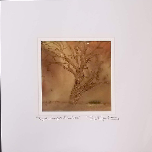 """""""By the Light of the Tree"""" 10"""" x 10"""" Signed and Matted Print"""