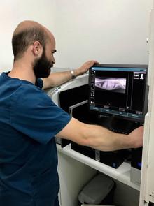 Radiología en PuntoVet