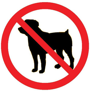 DOGS, PARKING AND LOCAL LAWS