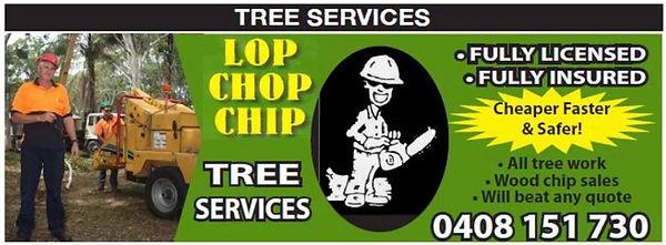 lop chip.JPG